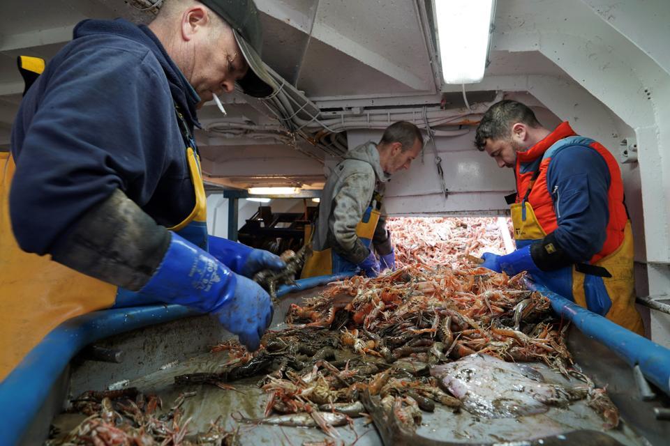 BRITAIN-EU-BREXIT-POLITICS-FISHING