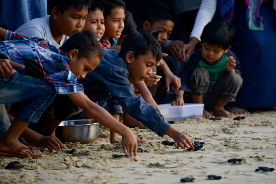 INDONESIA-CONSERVATION-SEA-TURTLE
