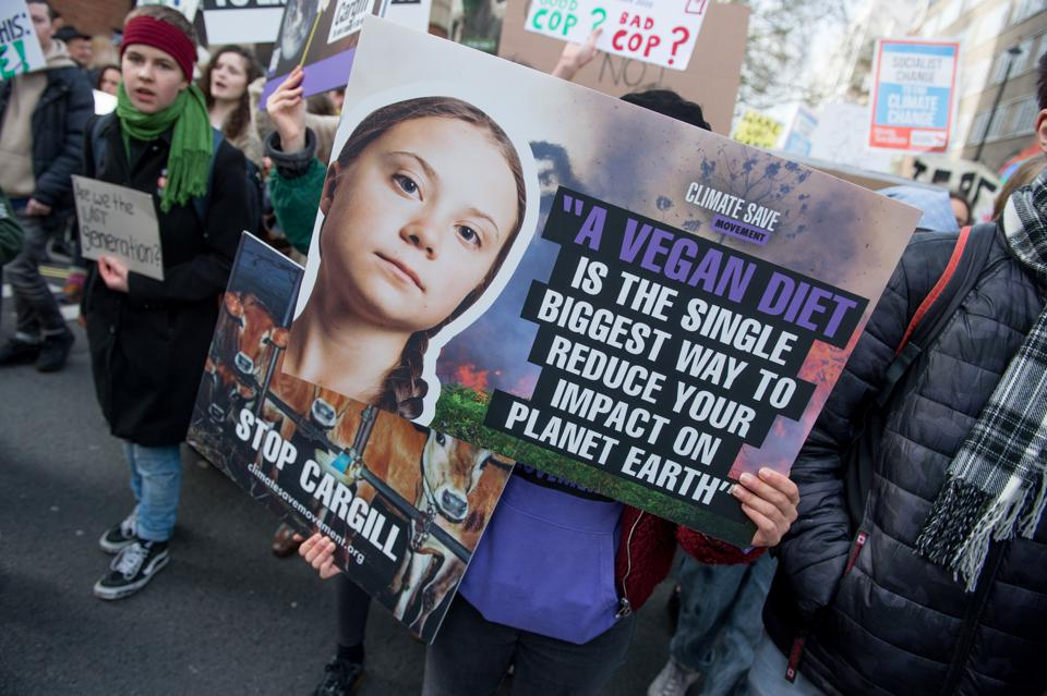 UK Students Strike Over Climate Change environmental