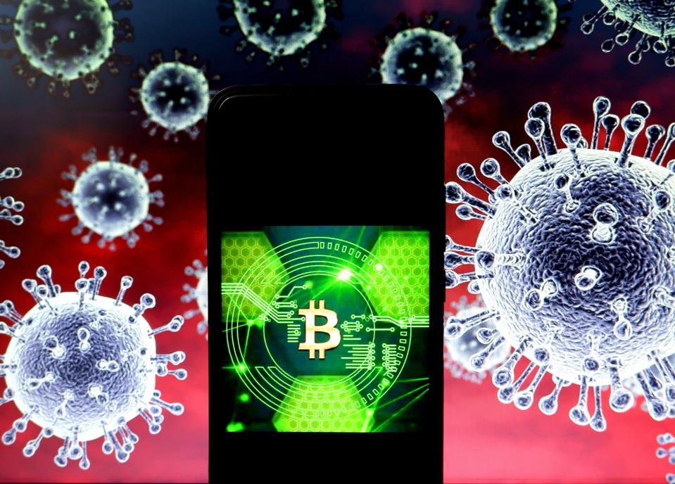 bitcoin, bitcoin price, social media, coronavirus, COVID-19, image