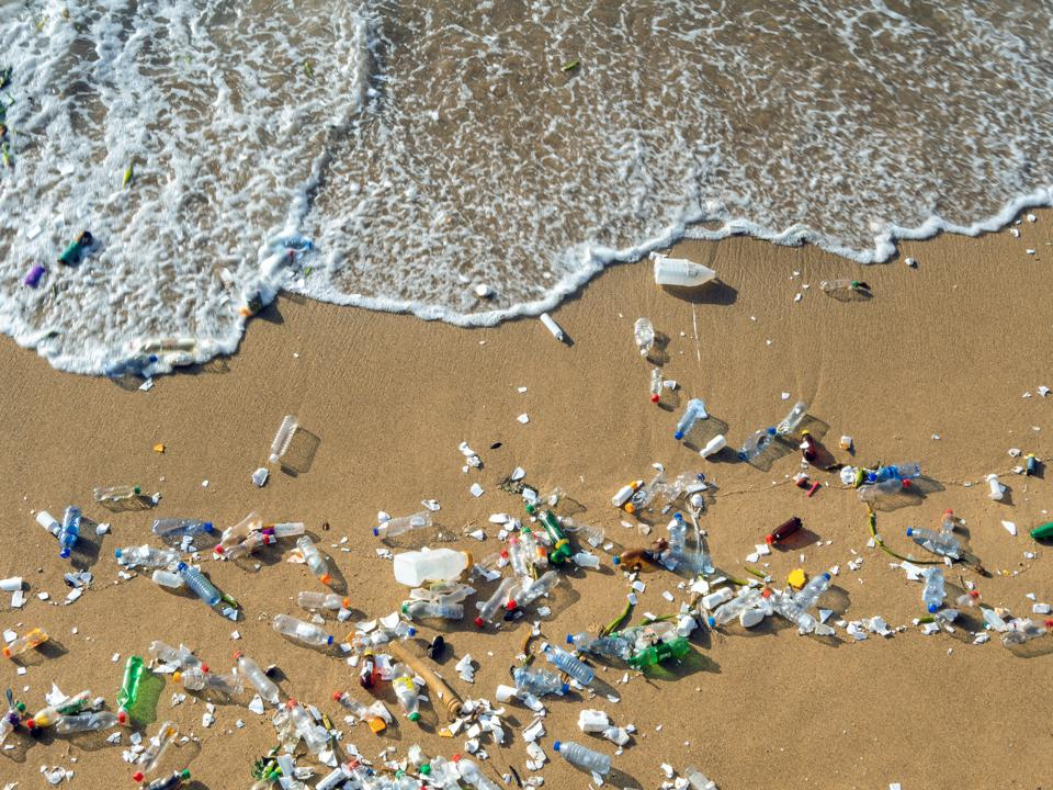 plastic on a beach that will break down into microplastic, which is accidentally eaten.