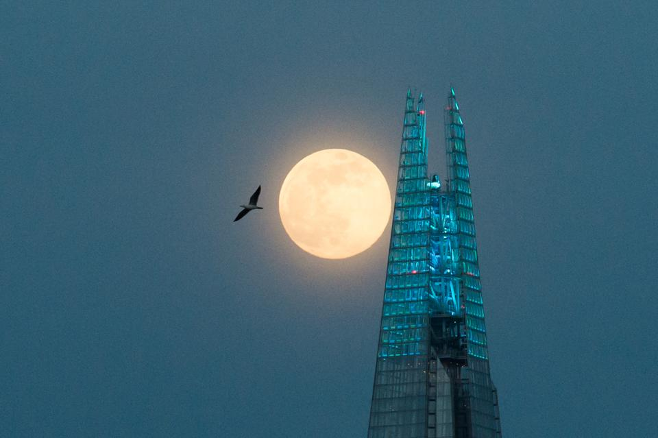 Super Pink Moon in London
