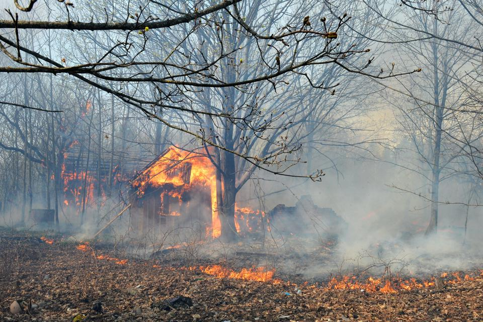 Forest fires in Chernobyl Exclusion Zone