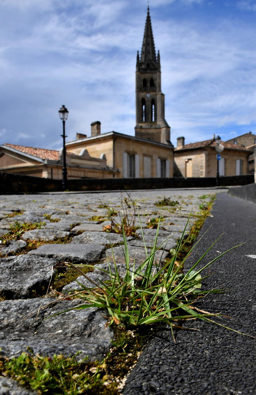 Deserted main street in Saint-Emilion on 33rd day of lockdown