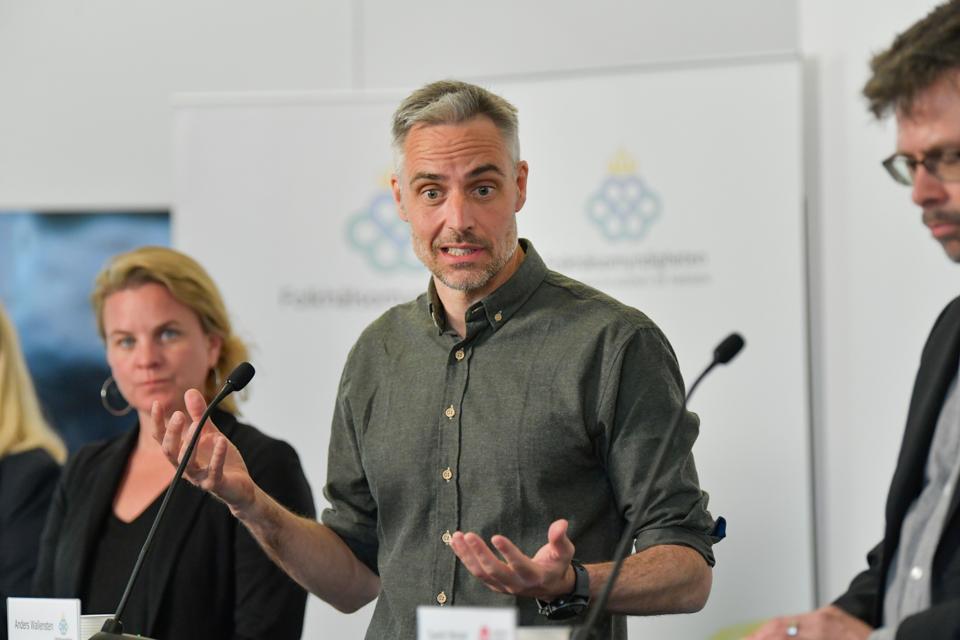 Sweden's deputy State epidemiologist Anders Wallensten