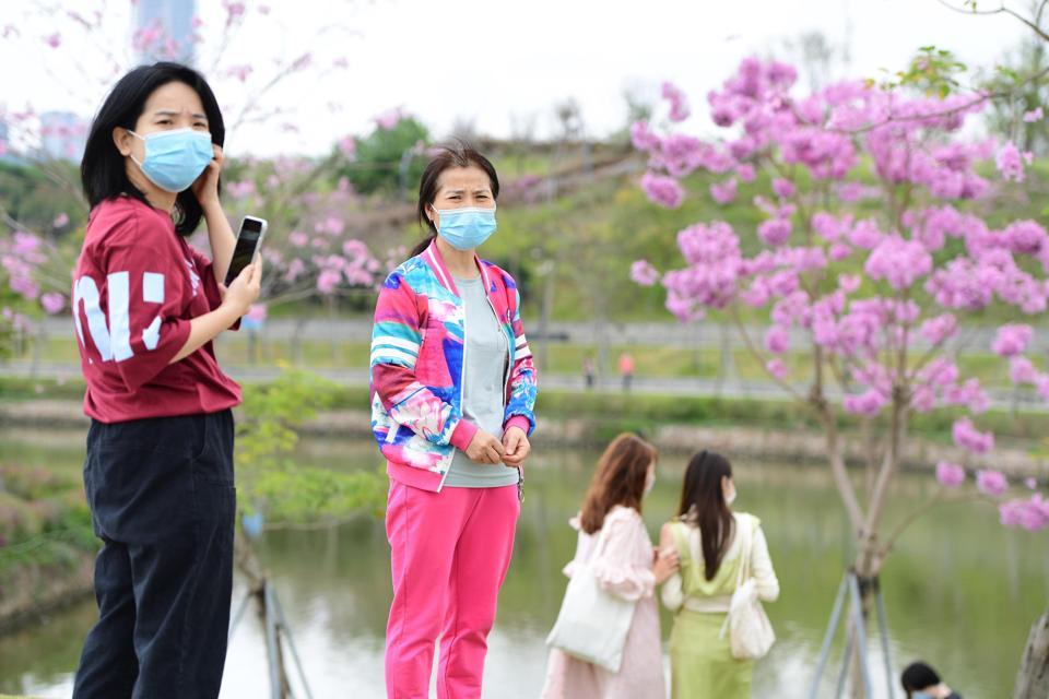 Daily Life In Shenzhen