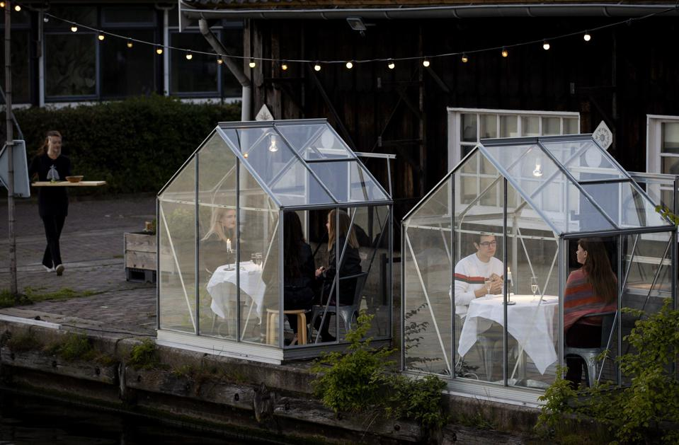 Netherlands greenhouse dining