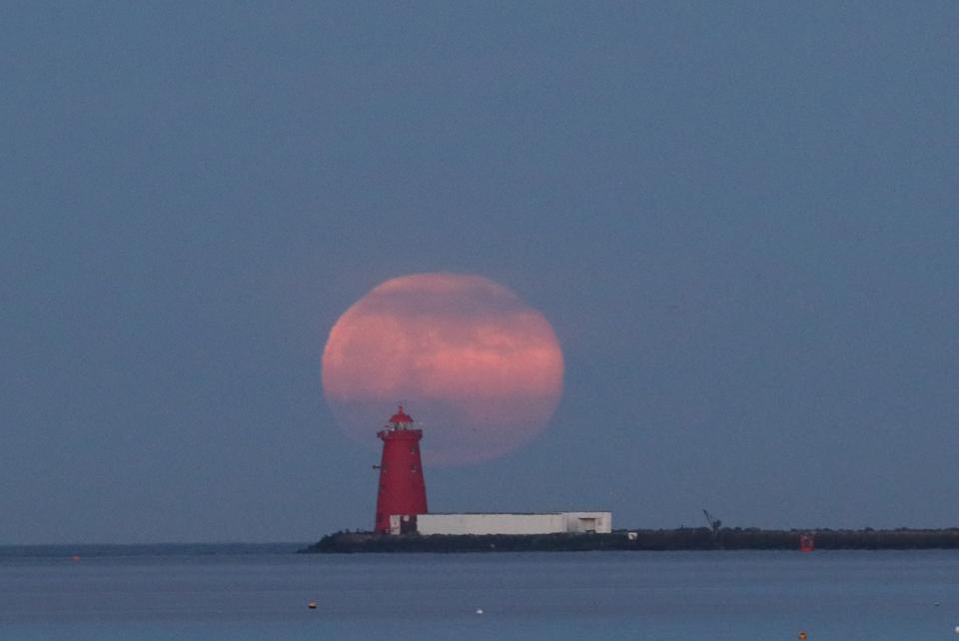 Flower moon in Dublin Bay, Ireland