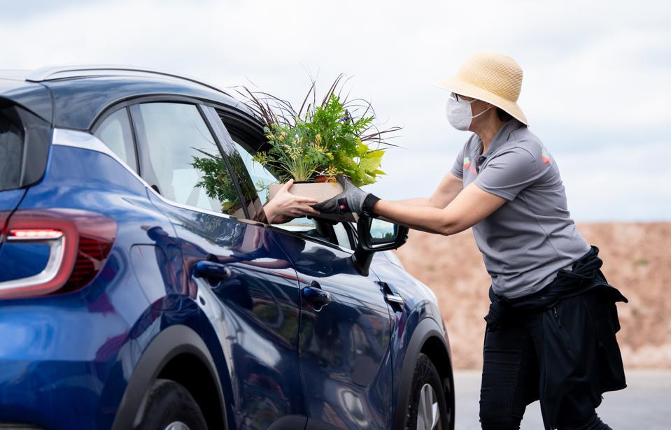 State Garden Show distributes summer flowers