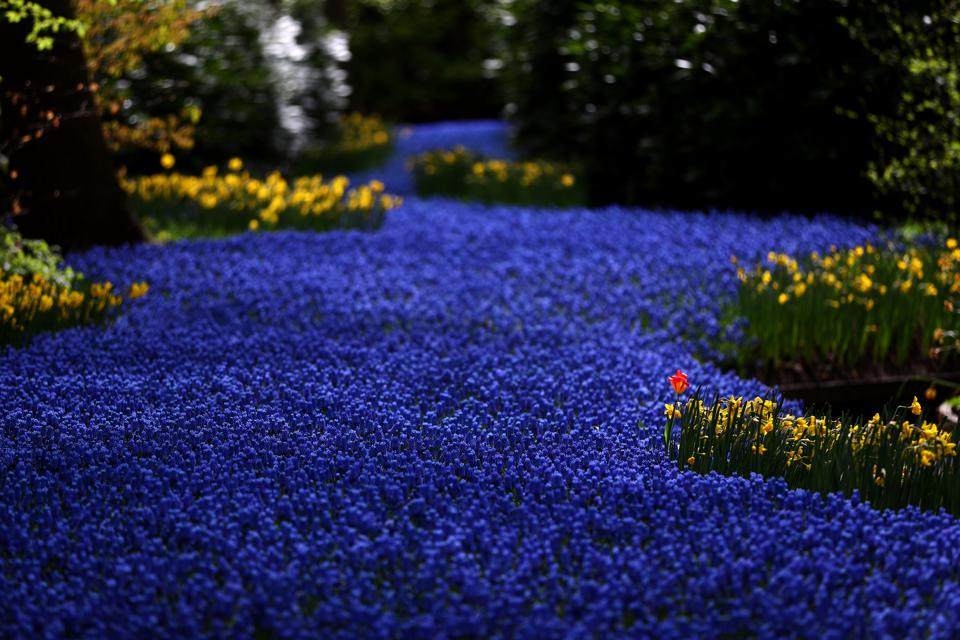 the garden of Europe