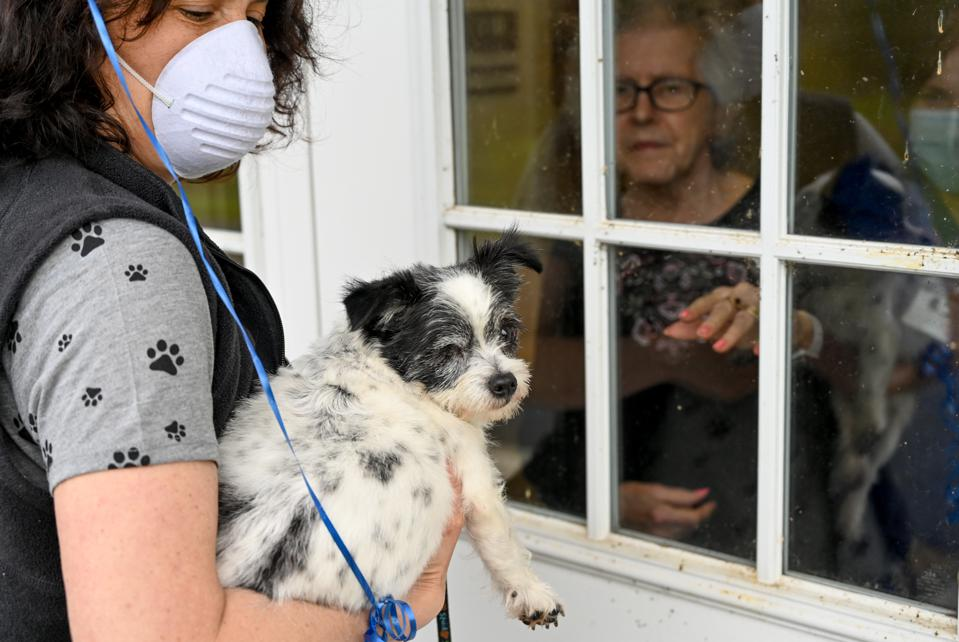 Animal Rescue League Brings Pets To Visit Nursing Home During Coronavirus COVID-19 Outbreak