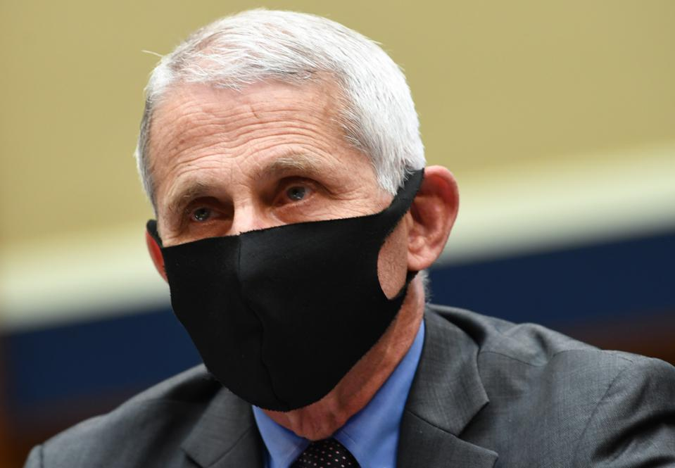 Dr. Fauci And Others Testify In House Hearing On Trump Administration's Response To Pandemic