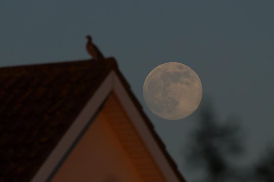 The Flower Moon Is This Year's Last Supermoon
