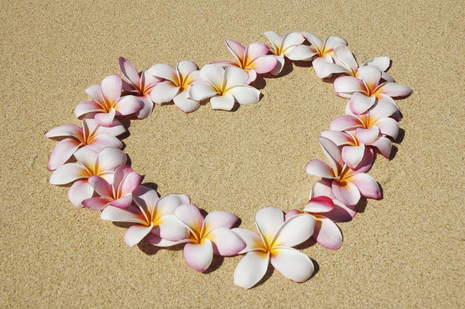 Ružové a biele kvety plumeria usporiadané v srdci na piesku.