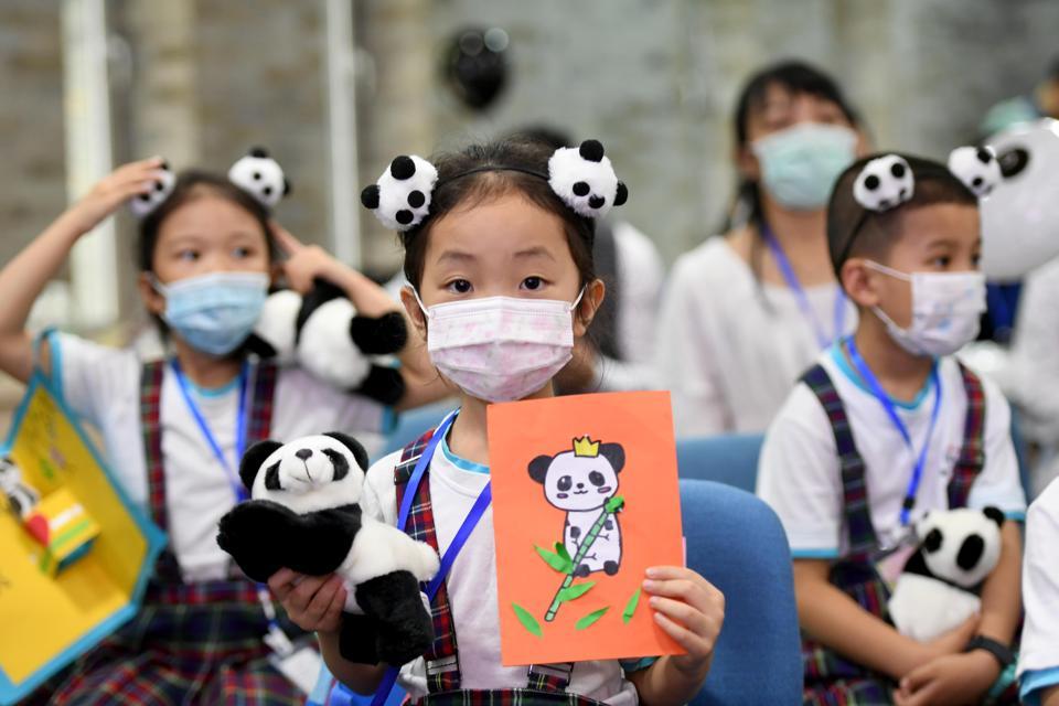 People In Sichuan Celebrate Taipei-born Panda's Birthday Online