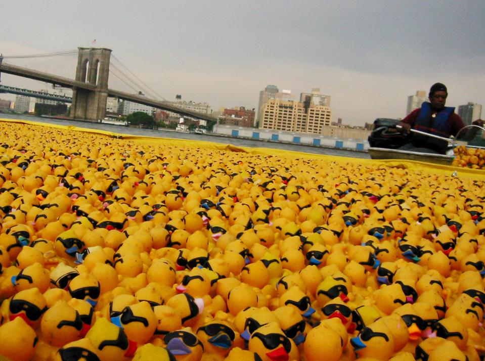 Duck race cleanup
