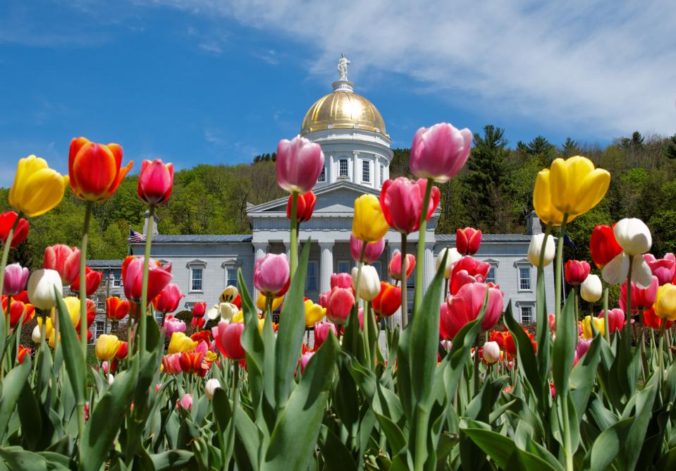 Montpelier Capital building with Tulips