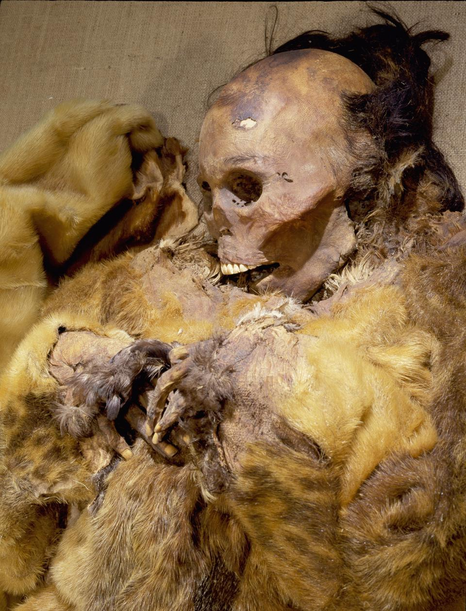 Archaeology Greenlandic woman, preserved through natural mummification