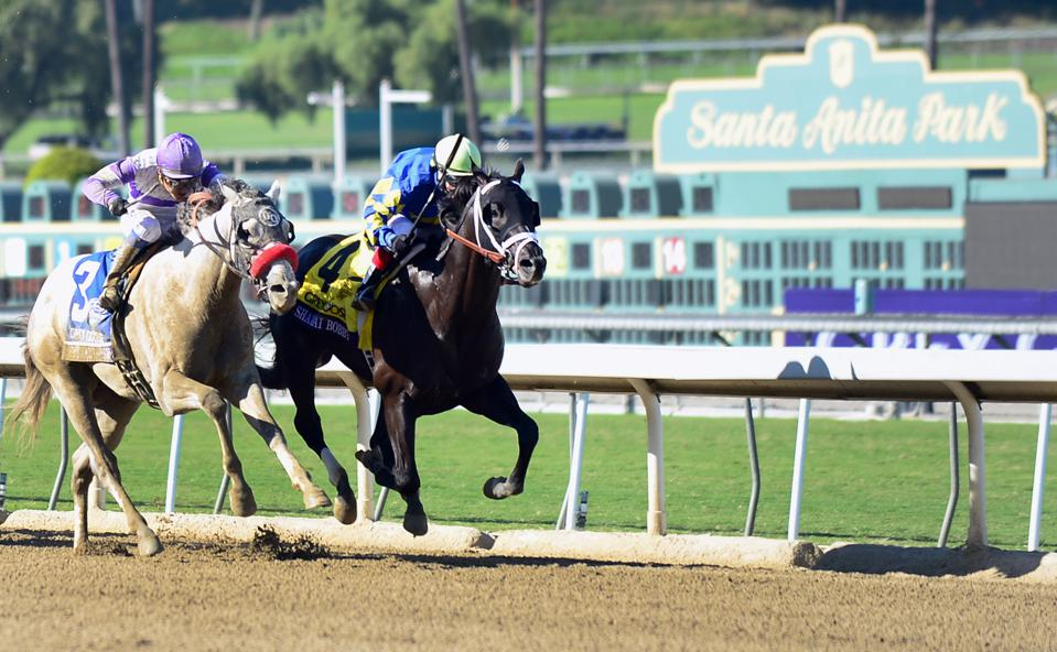 The Top 10 Horse Racing Tracks In The World And Why