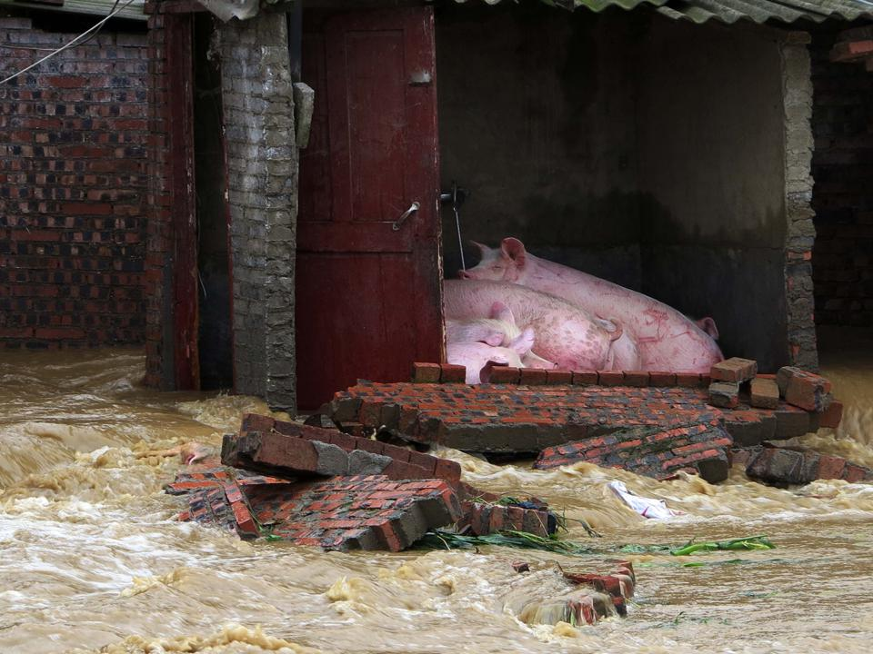 CHINA-WEATHER-FLOODS