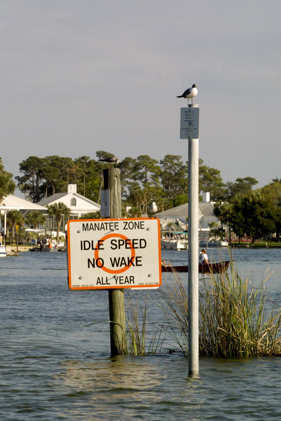 Boating No Wake zone to protect Manatees in canal at Crystal River Florida