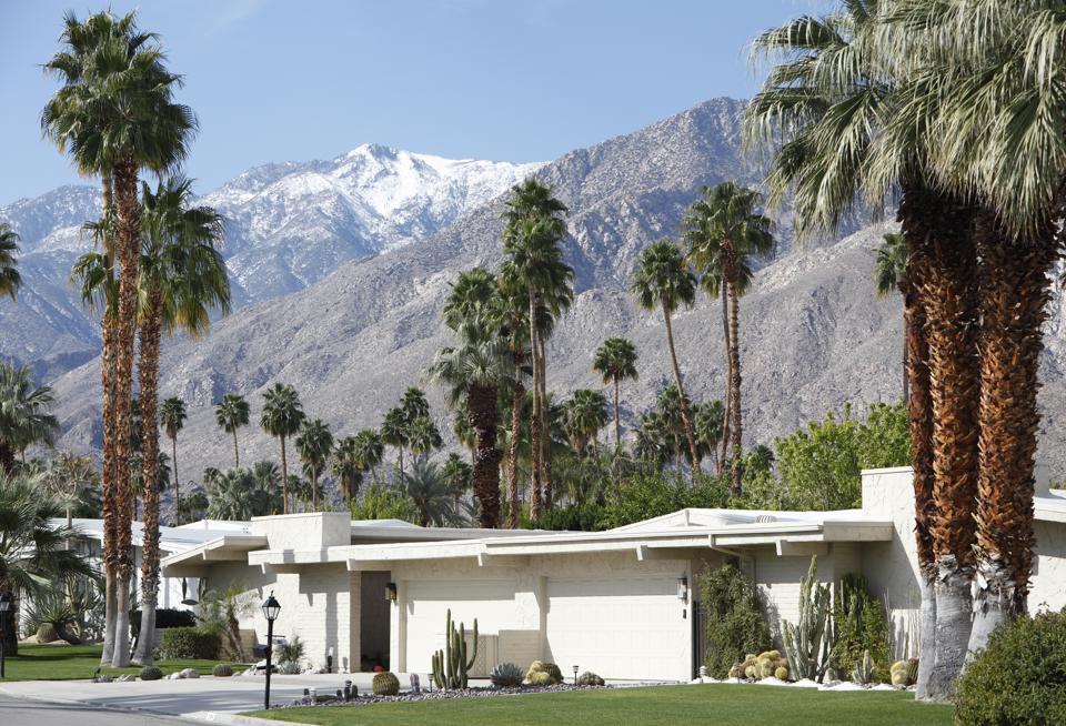 Mid Century Modernism With Palm Trees And Snow