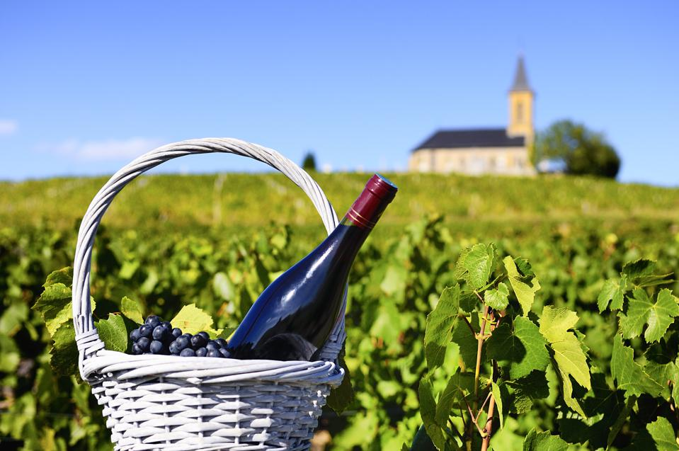 A bottle of red wine in a feel of vines with a church