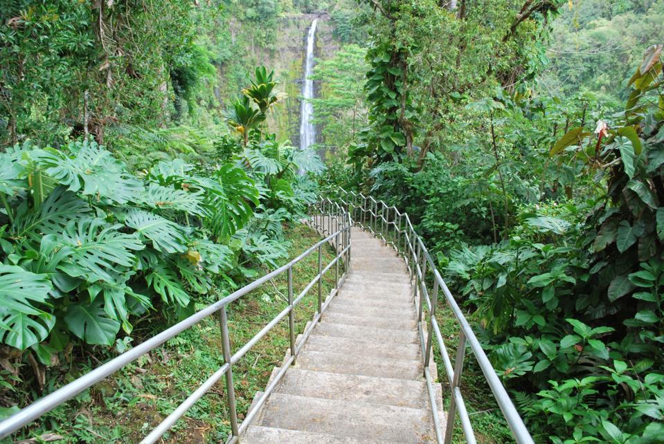 Akaka Falls State Park, Veľký ostrov, Havaj.
