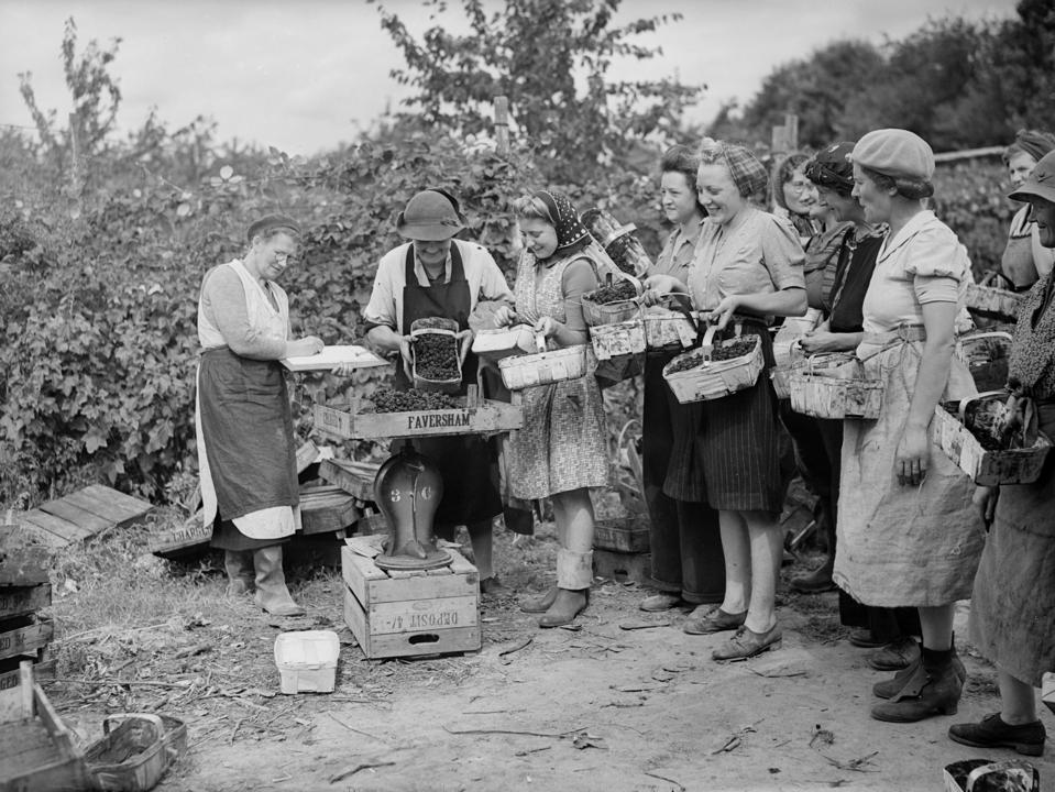 fruit vegetable pickers second world war