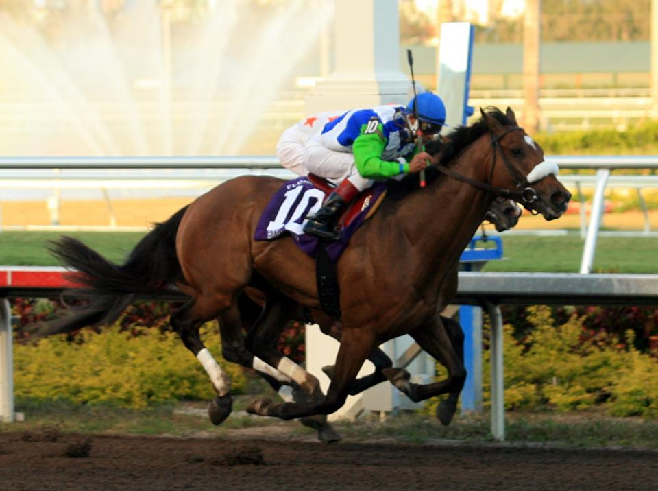 FLORIDA DERBY HORSE RACING