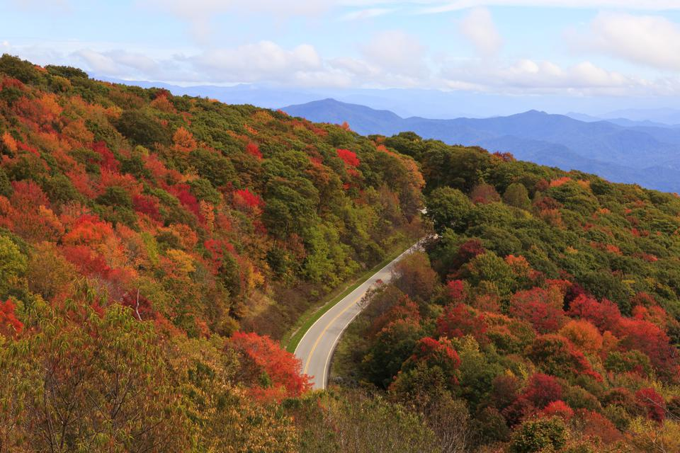 Cherohala Skyway, Tennessee, Cherokee National Forest