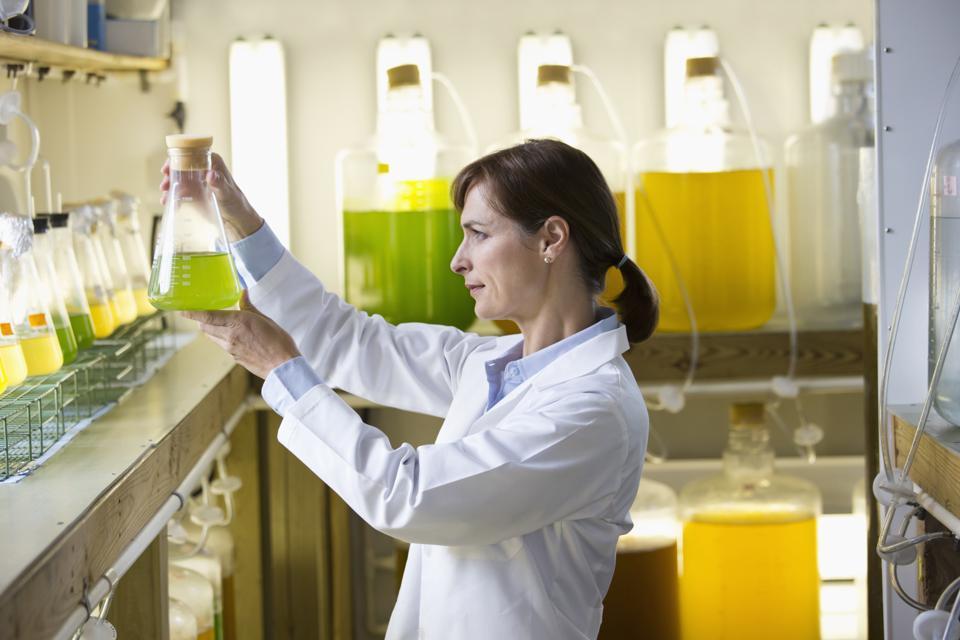 Using chemistry and engineered microalgae Checkerspot are creating new materials