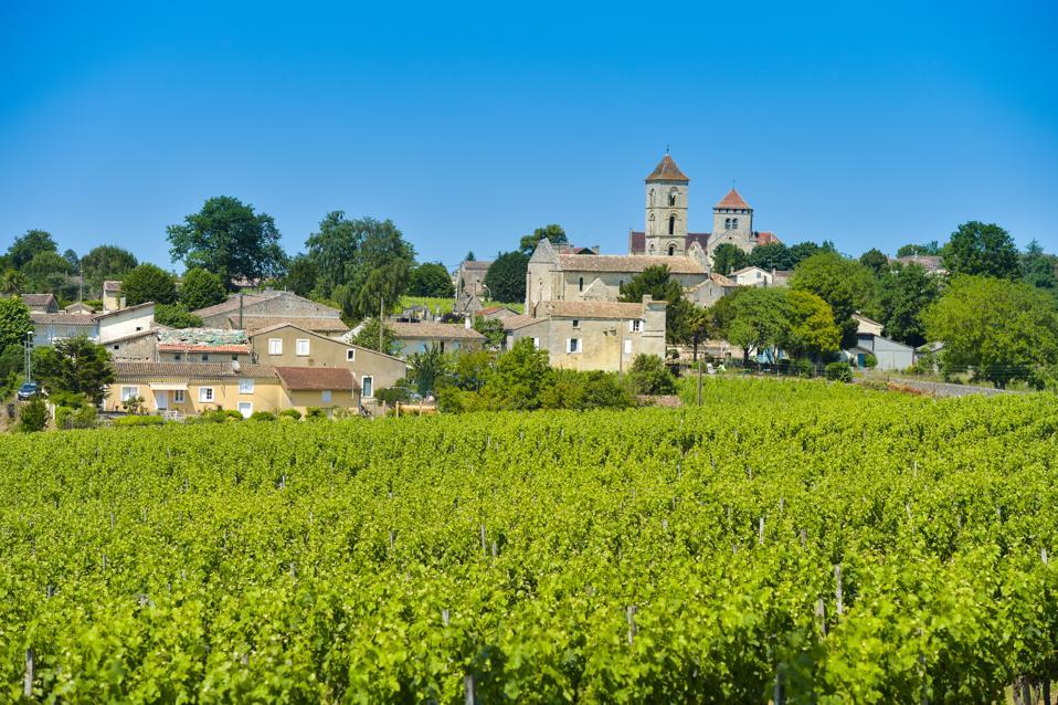 Vineyard and village of Montagne Saint-Emilion