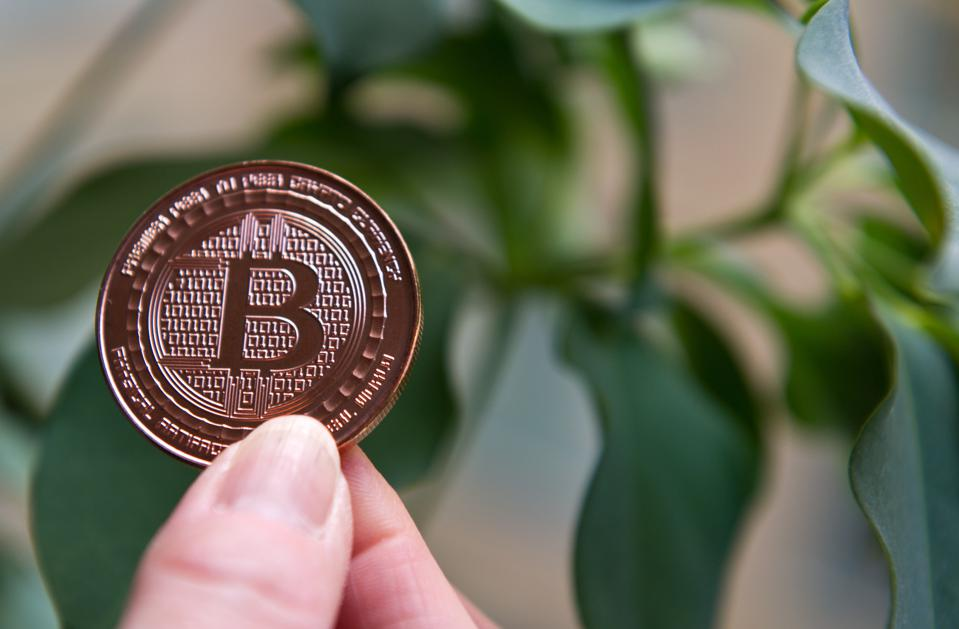 India's Demonetization Is Causing Bitcoin To Surge Inside The Country