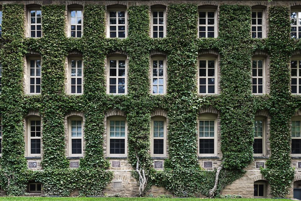 Nassau Hall ivy, Princeton University Campus...