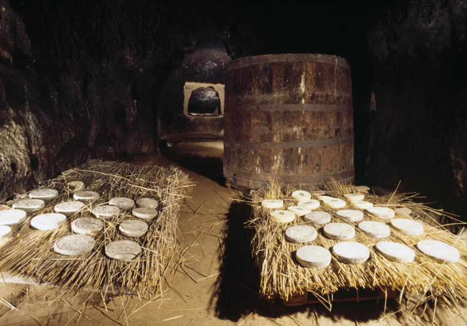 The ageing of Saint Nectaire, an AOP cheese, Puy-de-Dome, France.
