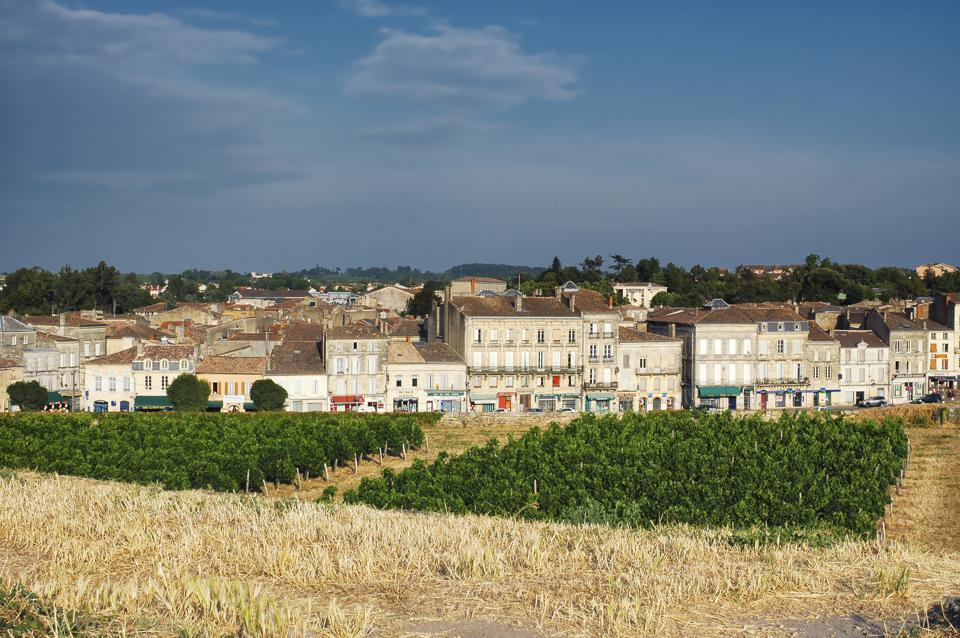 Town of Blaye and vineyard, Bordeaux, France