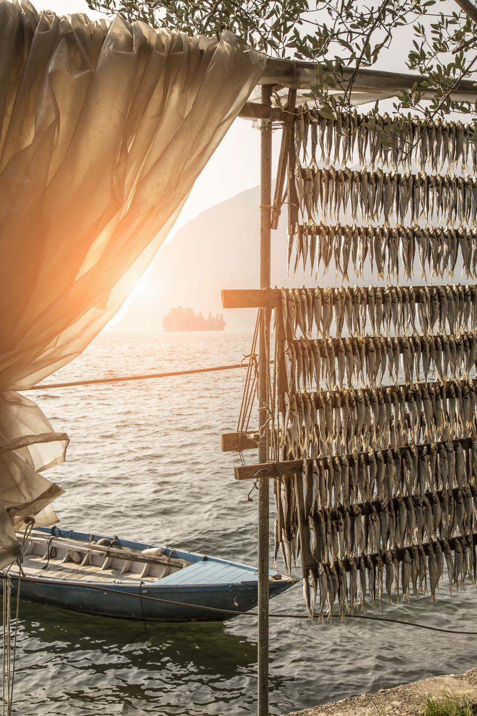 Fish drying, Lake Iseo, Lombardy, Italy