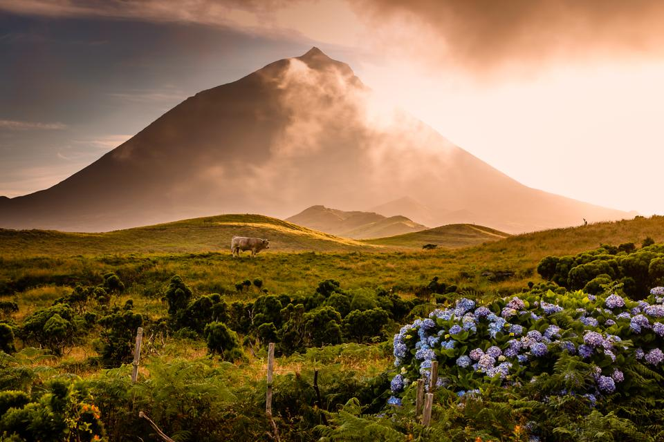 Pico volcano in the Azores