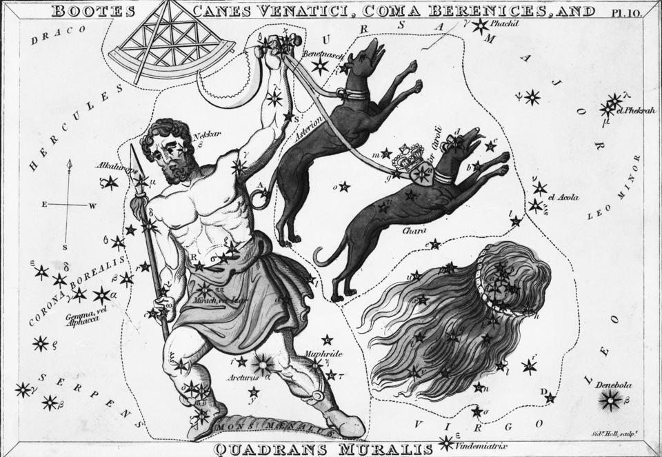 Constellations; Dogs, Etc.; Engraving