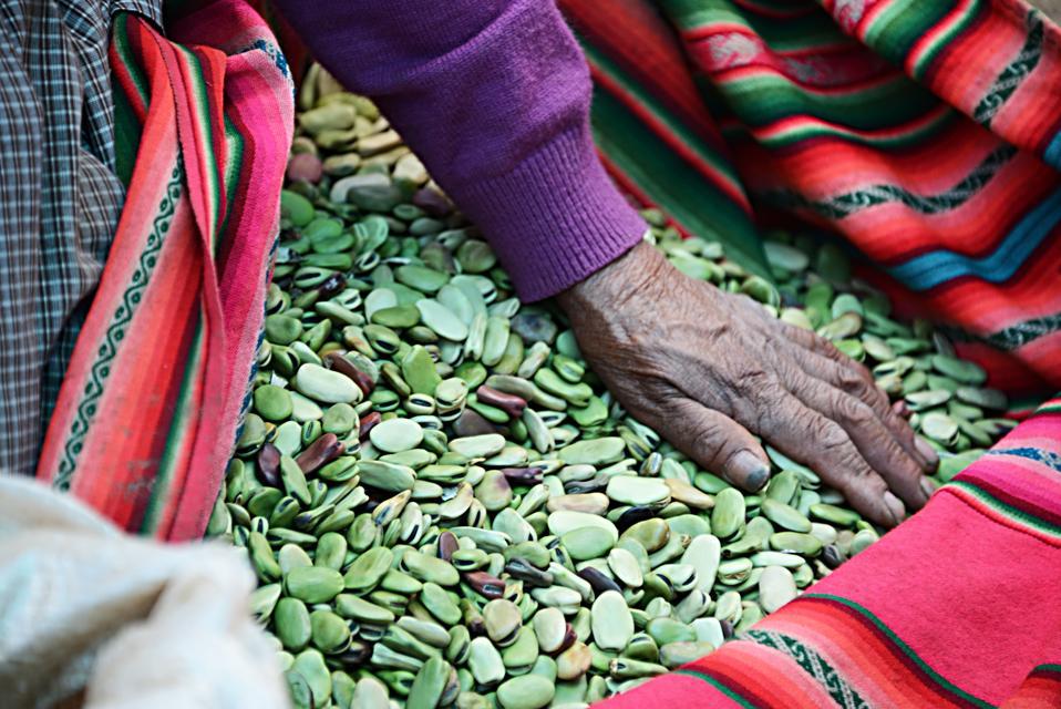Fava beans sold in Peruvian Market