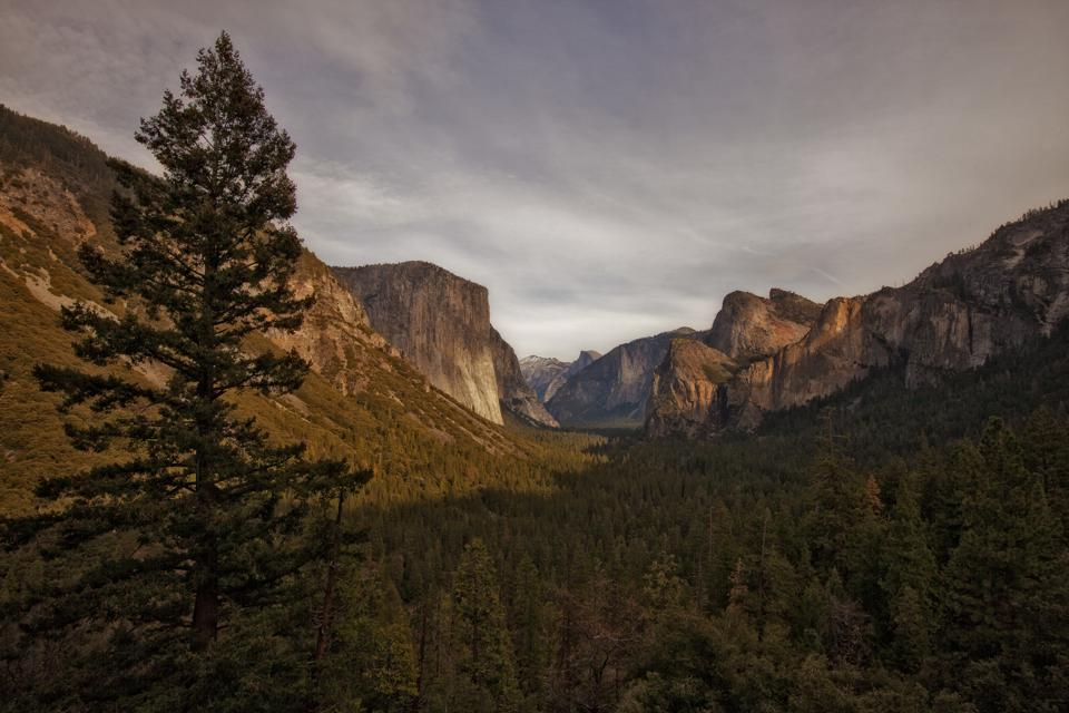 Late Fall in Yosemite Valley