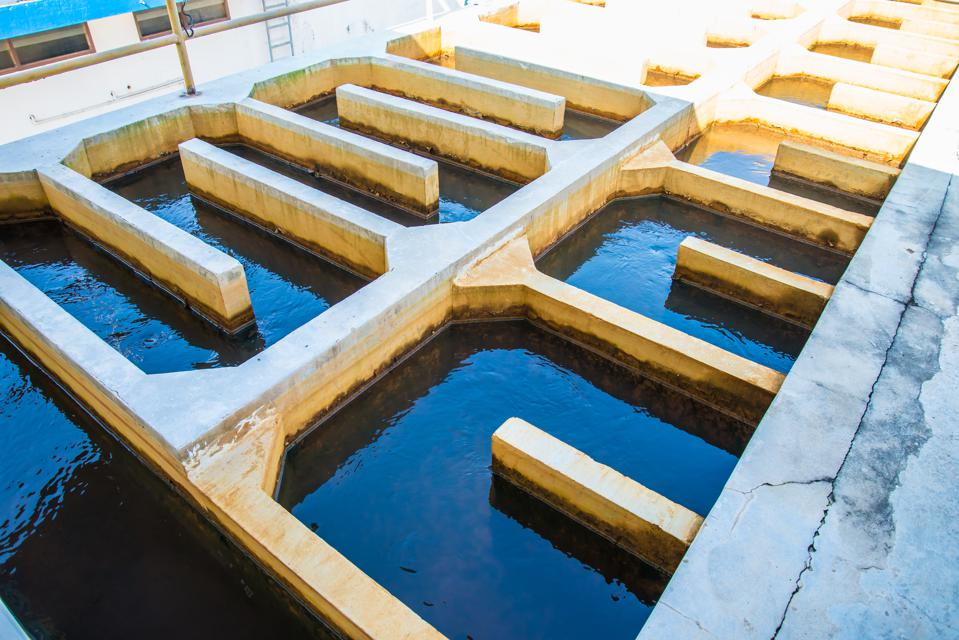 How This Startup Is Producing Sustainable Oil From Sewage Sludge