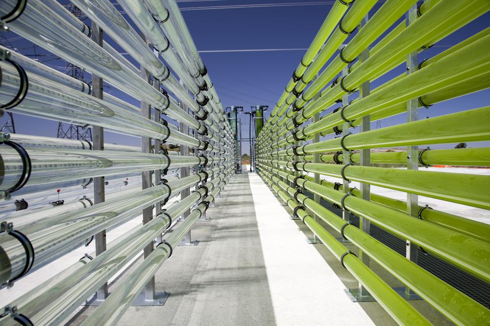 Mitsubishi Heavy Industries Carbon Capture