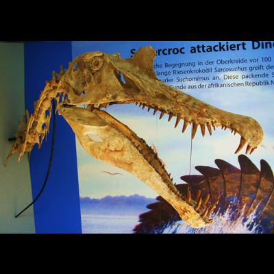10 Deadliest Dinosaurs Of The Mesozoic Era