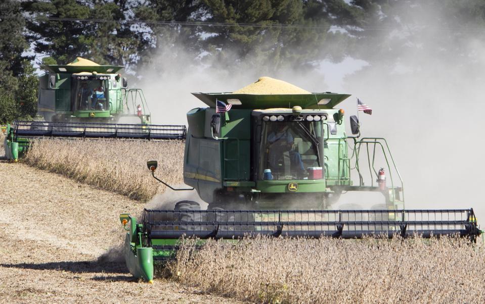Food and Farm Farm Subsidies