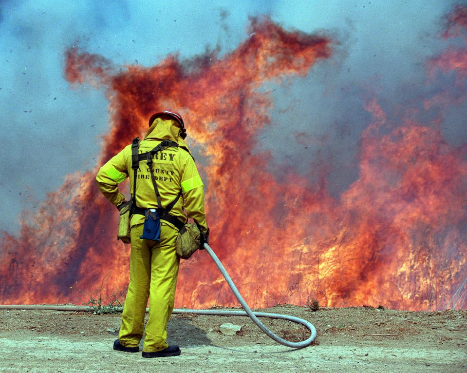 Prescribed burn being set in Malibu Creek State Park Tuesday morning July 8, 1997, to eliminate this