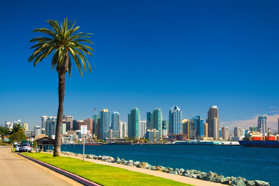 San Diego skyline with Palm Tree, Bay, and Blue Sky