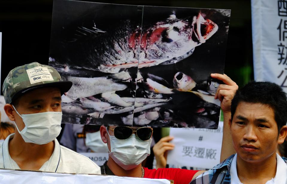 Vietnam's Solution To Fish Death Scandal Leaves Many Locals Unsatisfied