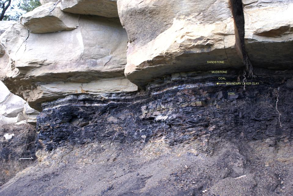 The Cretaceous-Paleogene boundary layer is very distinct in sedimentary rock.